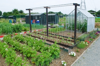 New allotments